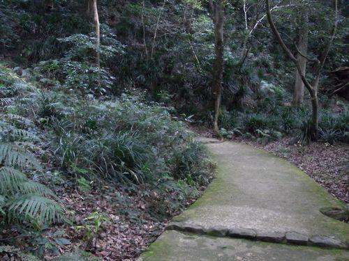 宇和島城跡5