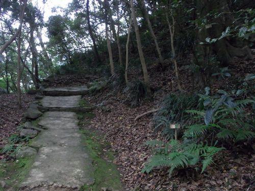 宇和島城跡10