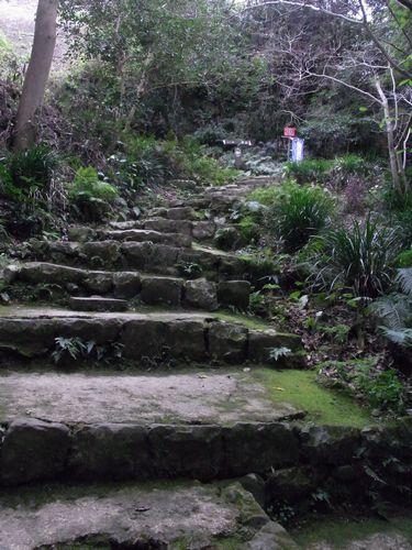 宇和島城跡13