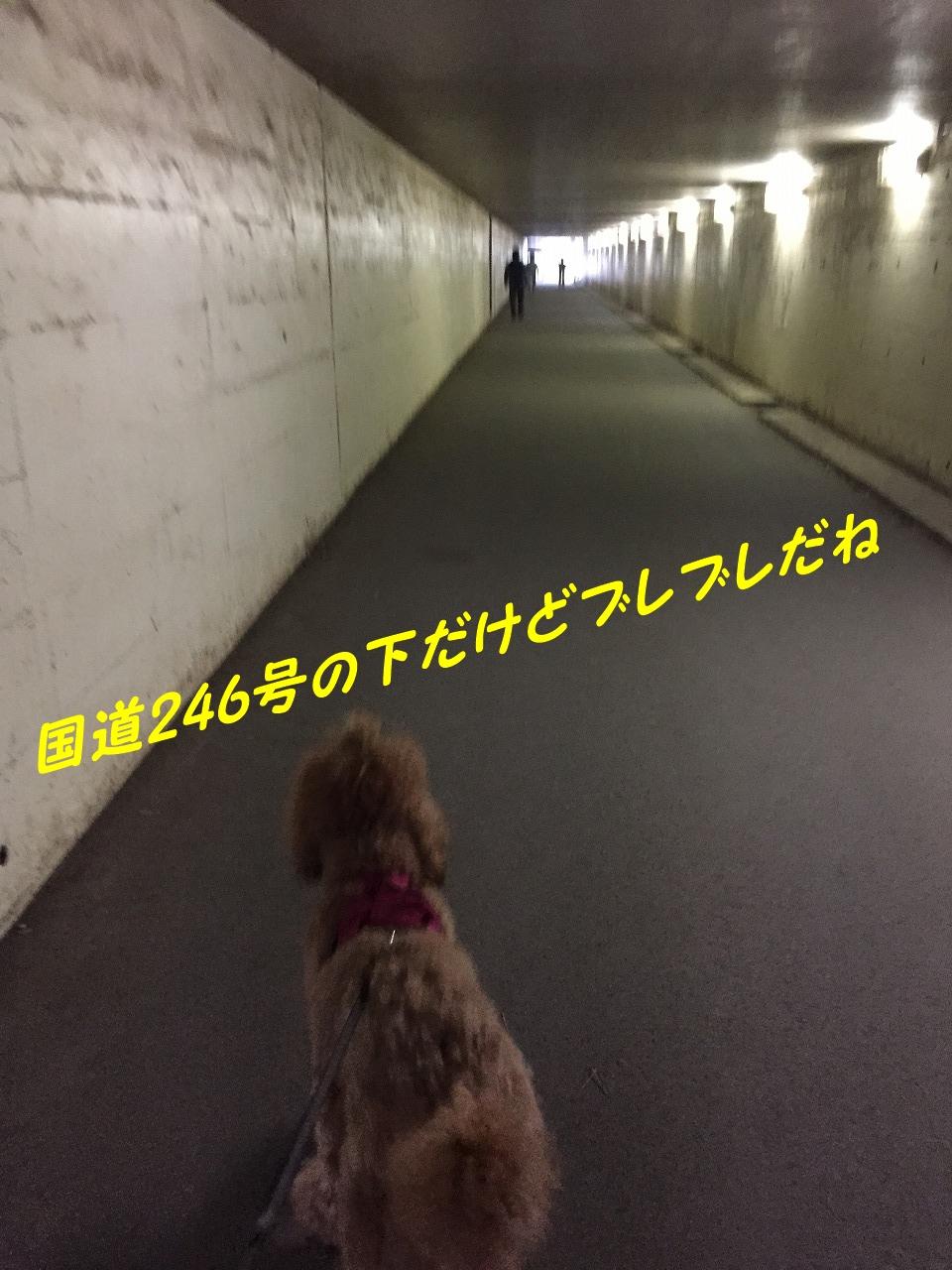 760b-IMG_0404.jpg