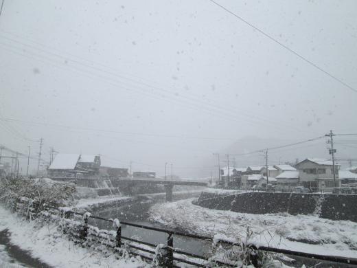 雪2016②
