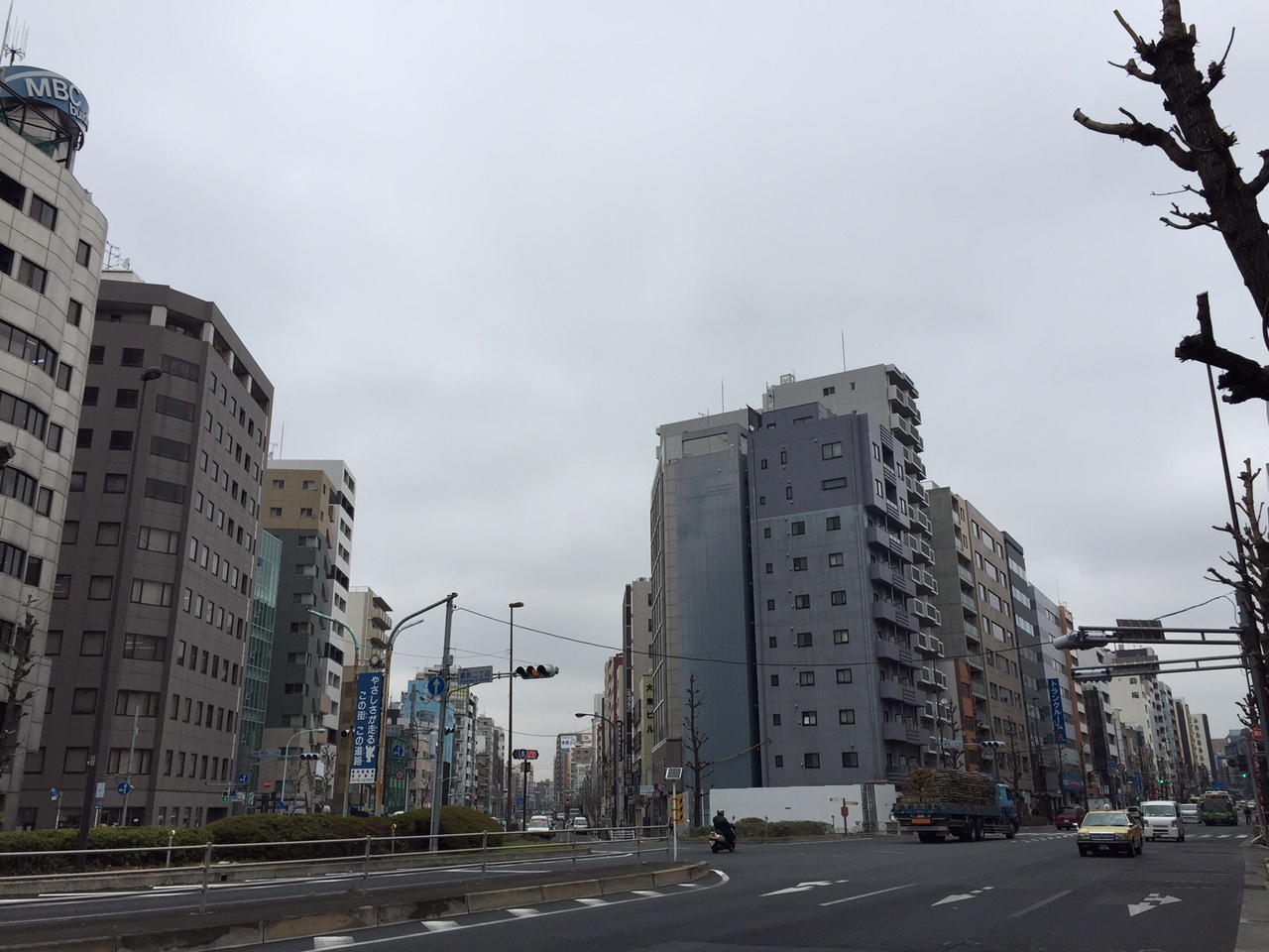 IMG_7871.jpg