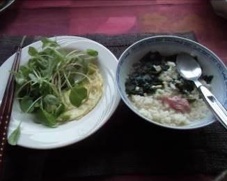 うんせいと野菜1