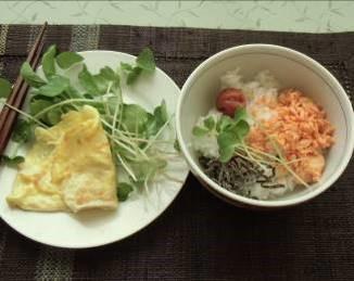 うんせいと野菜3