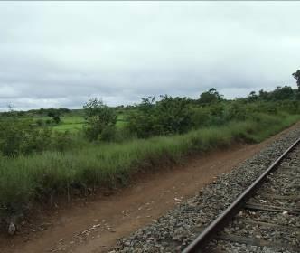 マダガスカル鉄道2