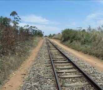 マダガスカル鉄道3
