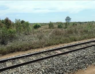 マダガスカル鉄道4