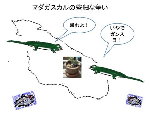 緑トカゲのエサ場争い