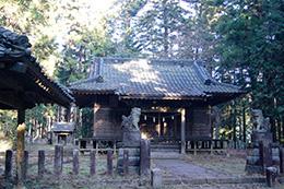 160107足利市日光神社の杉⑥
