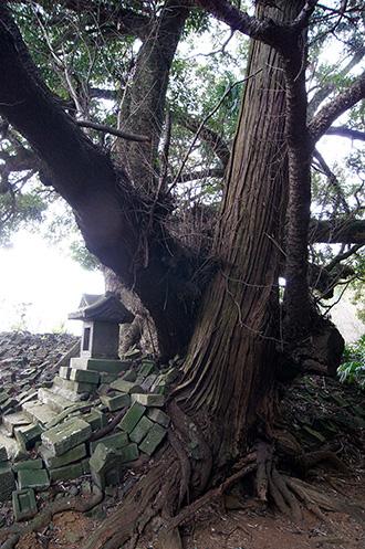 160111成田市中里道祖神⑥