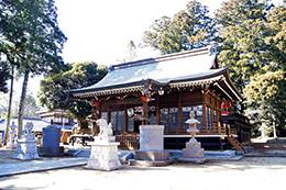 160211香取市大戸神社の杉⑧
