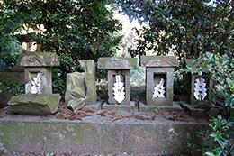 160211香取市大戸神社の杉⑨