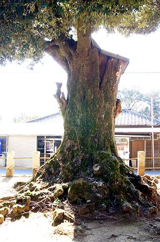 160211香取市大戸神社⑪