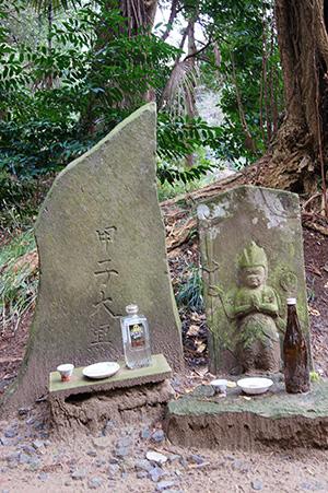 160223星宮神社の杉⑩