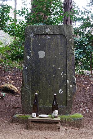 160223星宮神社の杉⑫