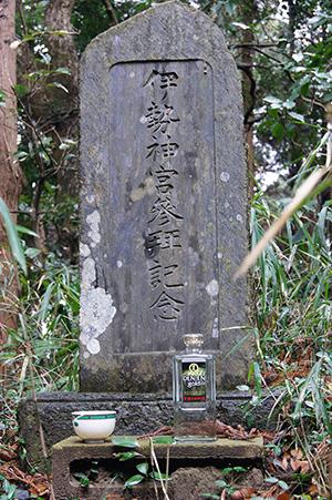 160223星宮神社の杉⑬