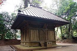 160223星宮神社の杉⑭