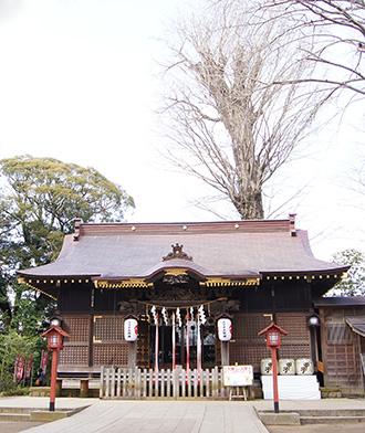 160308鏑木麻賀多神社①