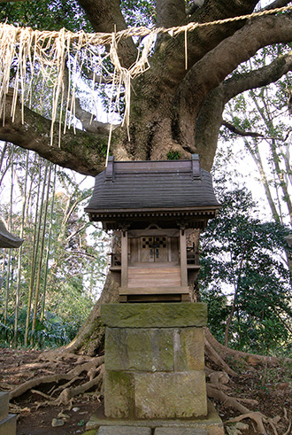 160308寺崎諏訪神社④