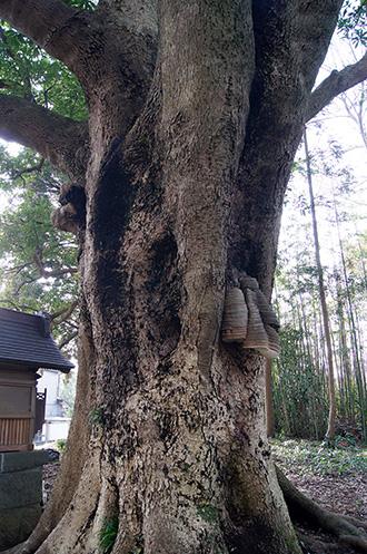 160308寺崎諏訪神社⑤