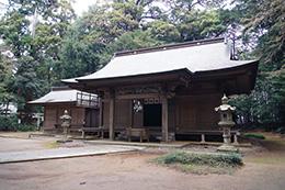 160316側高神社千年杉⑩