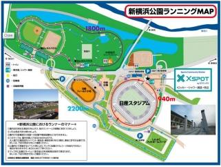 shinyoko-park.jpg