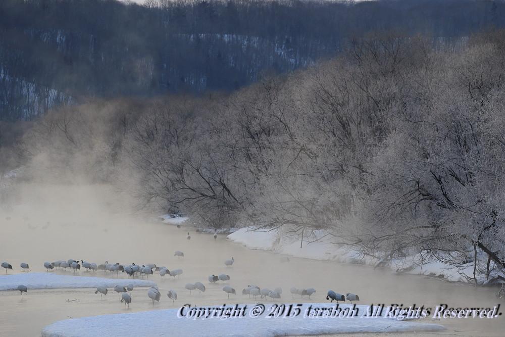20160227-7D2_2012.jpg