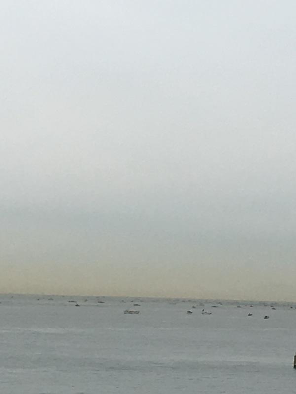 いかなご漁2016