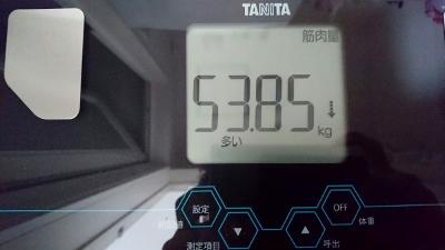 2016-3-31 筋肉量 (400x225)