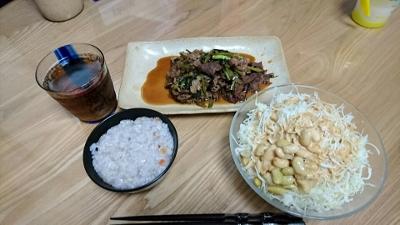 2016-3-31 夕食 (400x225)