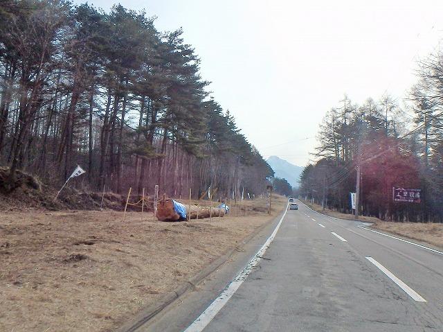 20160330木造り本宮一 (5)