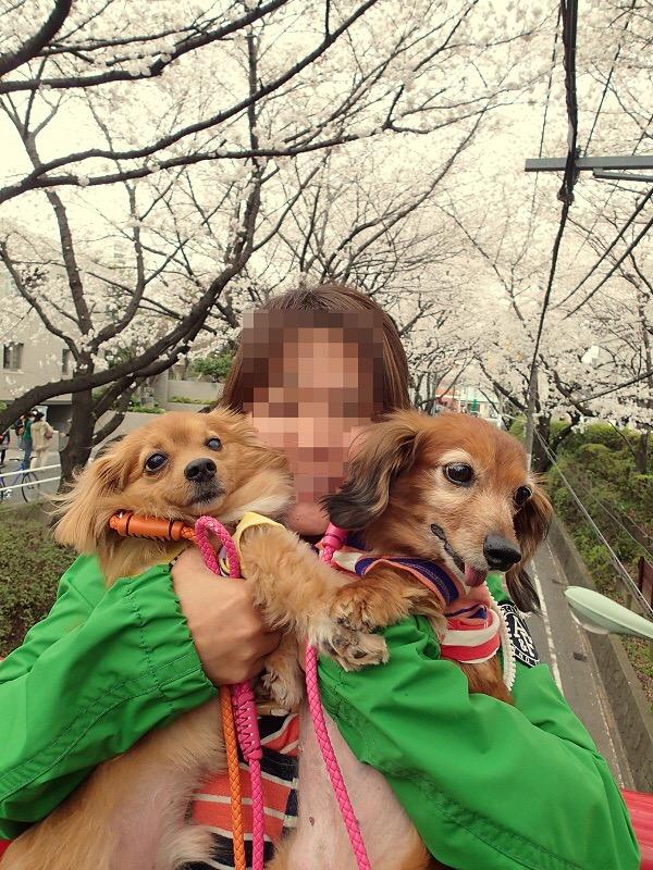 2016_03_14_21_43_19.jpg