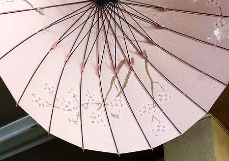 季節の兼用傘 桜