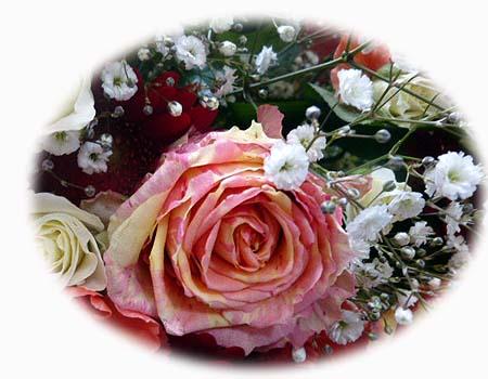 ポイント薔薇