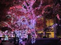 ミッドタウン東京0001_1