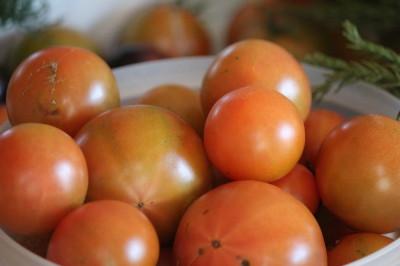 トマト0001_2