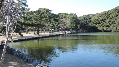 Sakuraga_pond_and_Ikemiya_shrine.jpg