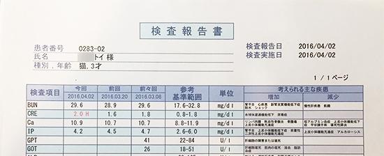 blog_000007480.jpg