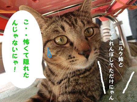 2016-02_10_04.jpg
