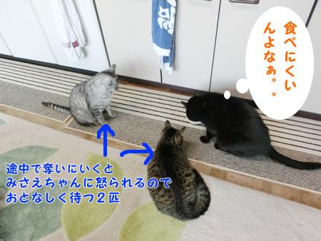 2016-02_23_02.jpg