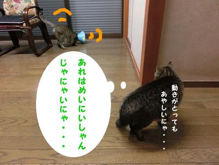 2016-03_17_01.jpg