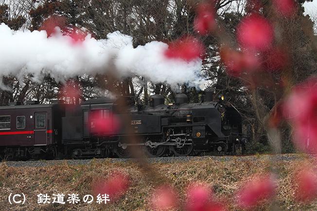 20110220折本
