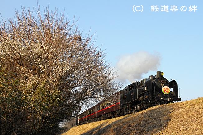 20110226久下田