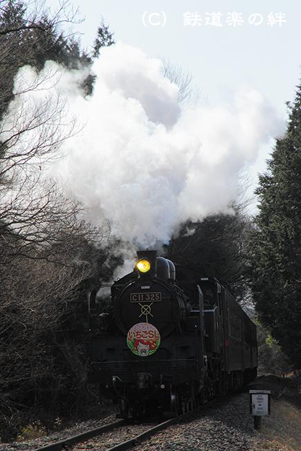 20110226多田羅