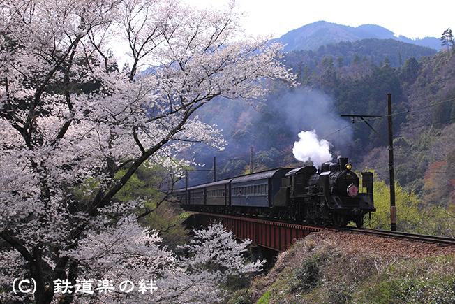 20110402笹間渡025D2