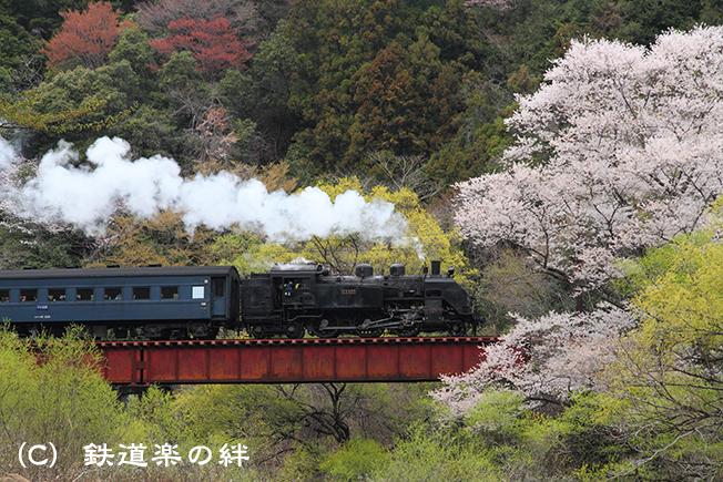 20110403笹間渡02