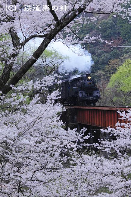20110403笹間渡015D2