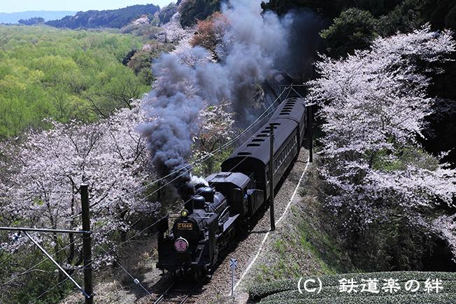 20110407神尾045D2