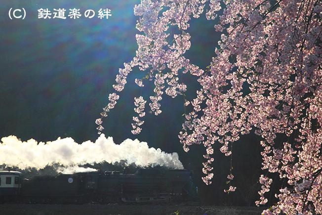 20110505上野尻02
