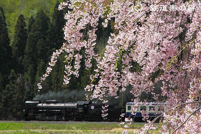 20110507上野尻01